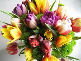 Bos bloemen
